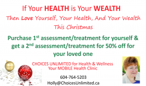 holly-christmas-2015-biz-card-ad